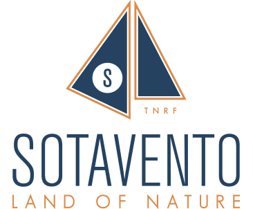 Sotavento Tenerife | Land of Nature