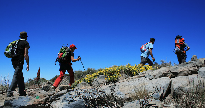 Routes and hiking trails beside Sotavento Tenerife