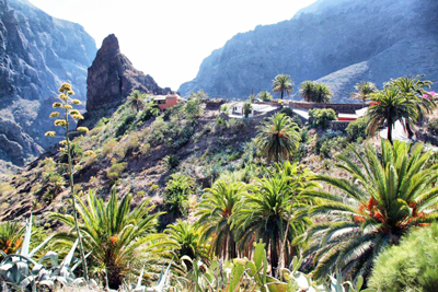 Tenerife Beauty