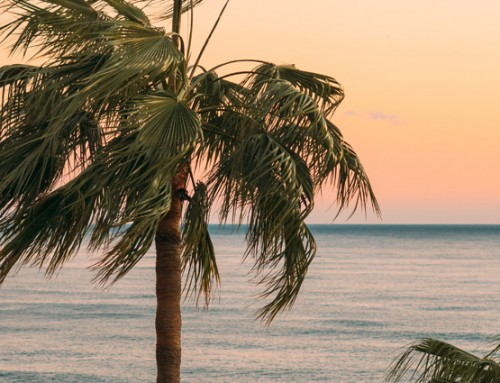 Buying a home in Tenerife
